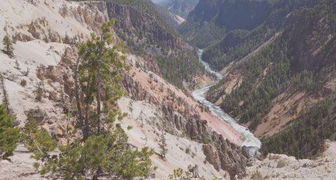 Yellowstone Grand Canyon view